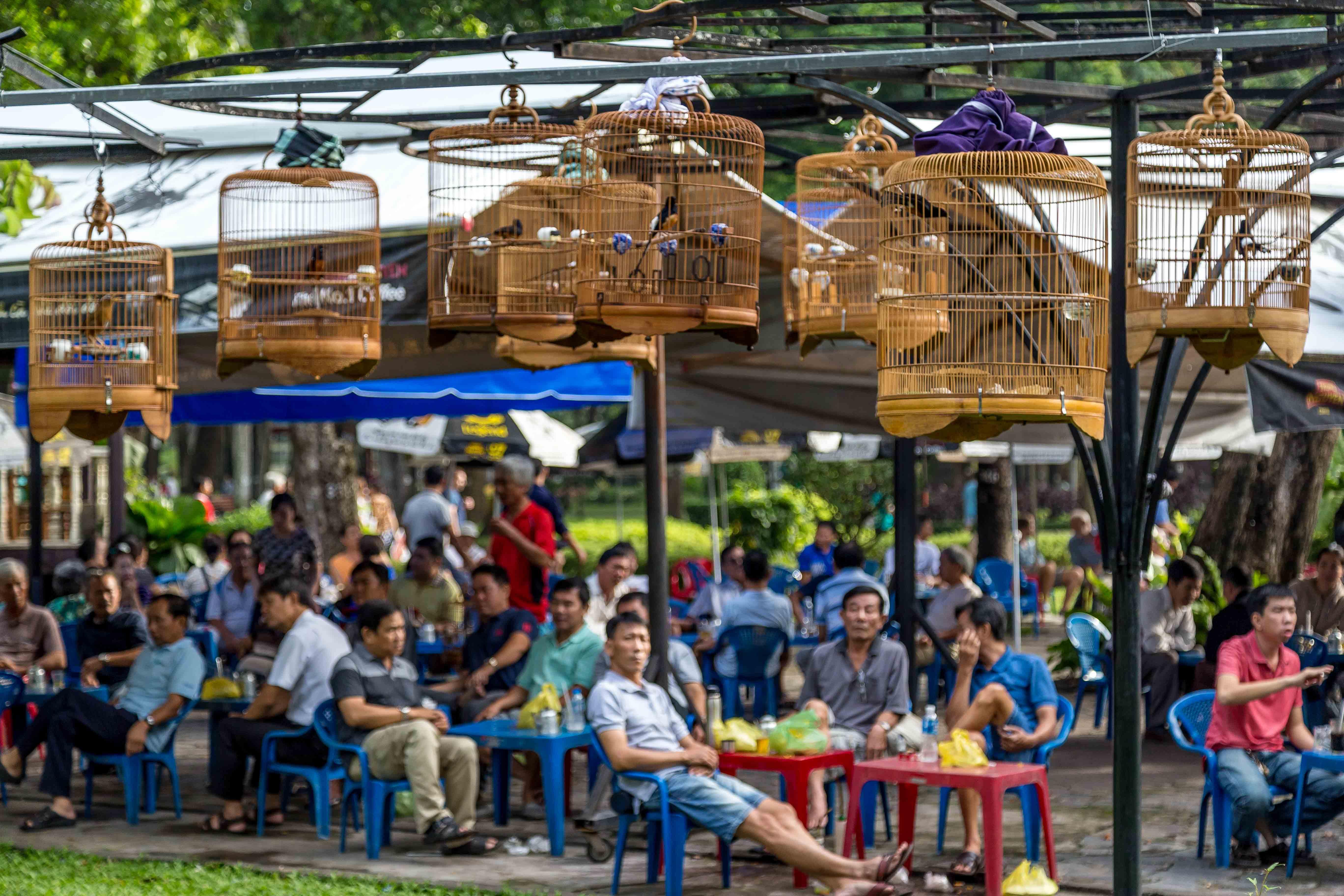 saigon bird park