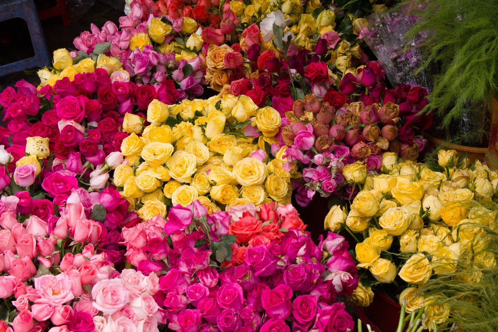 buy flowers in saigon ho chi minh city
